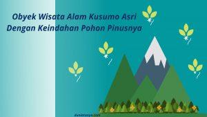 Read more about the article Obyek Wisata Alam Kusumo Asri,Dengan Keindahan Pohon Pinusnya