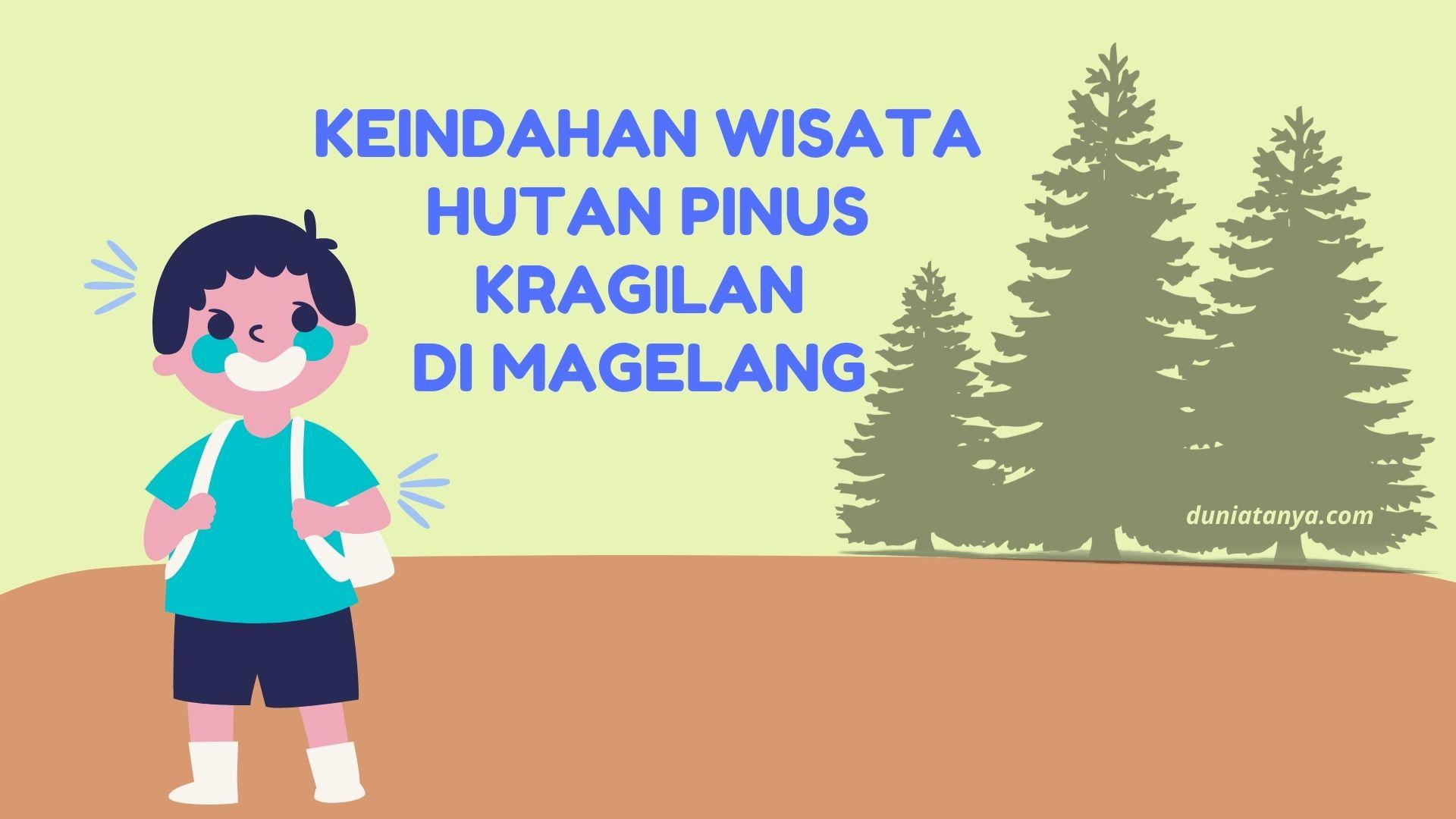 You are currently viewing Keindahan Wisata Hutan Pinus Kragilan Di Magelang