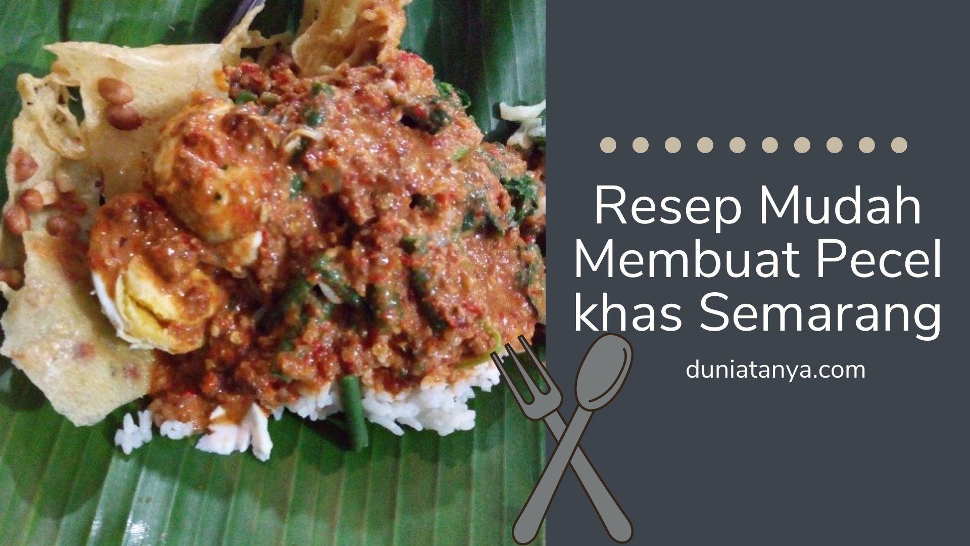 Read more about the article Resep Mudah Membuat Pecel khas Semarang